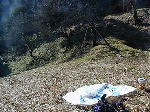 20061125d.jpg