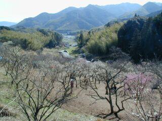 fukuoka1_13.jpg