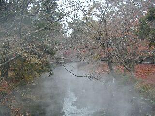 金鱗湖から大分川